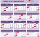 Excel Ovulation Calendar